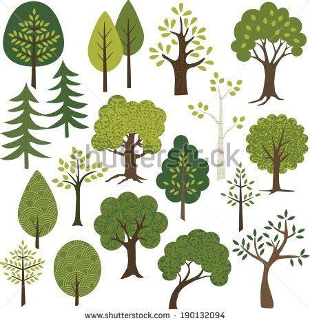 Deciduous Forest Biome - Definition, Location, Climate